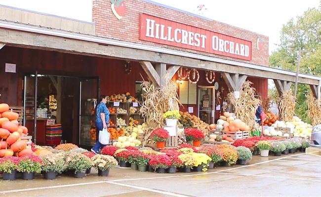 Hillcrest-Orchard.jpg?mtime=20200923172119#asset:1643