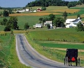 What to Do in Amish Country