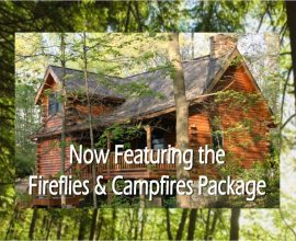 NEW Fireflies and Campfires Package