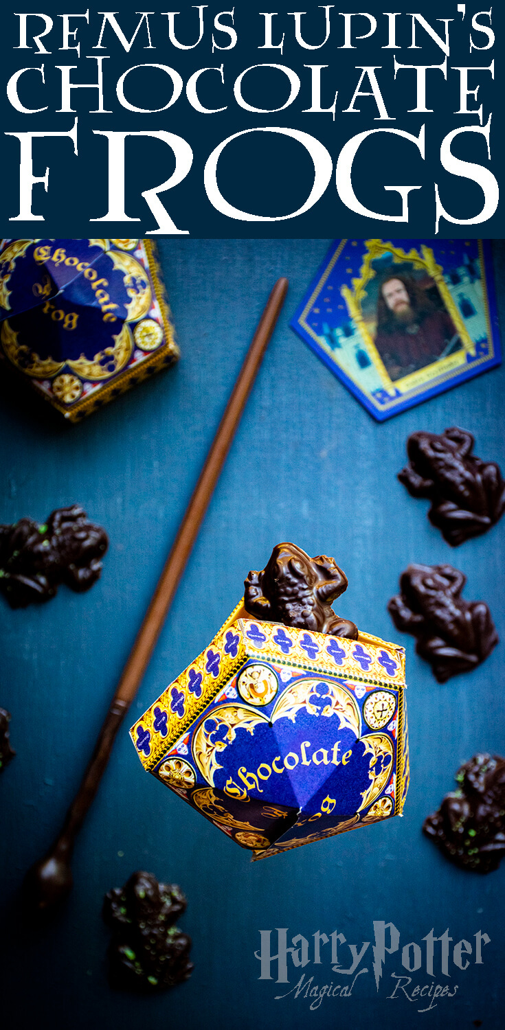 Lupin's Chocolate Frogs   Harry Potter Magical Recipes