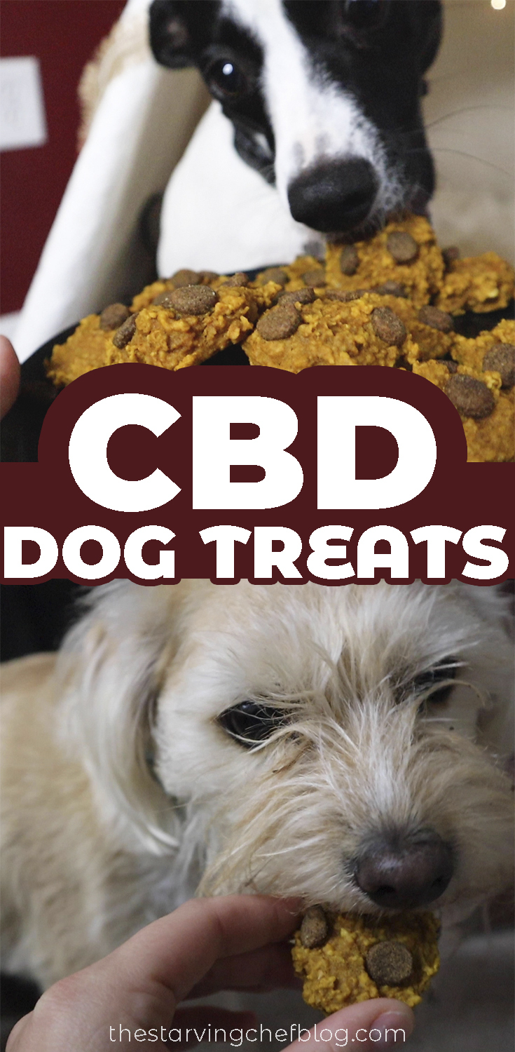 Homemade CBD Dog Treats